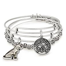 Alex & Ani Pawsitive Vibes Set of 3 Bangles Silvertone