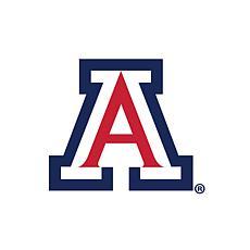 Arizona  Distressed Logo Cutout Sign