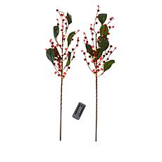 """""""As Is"""" august & leo Set of 2 LED Twigs with Remote"""