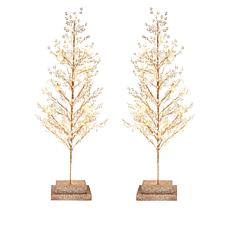 "august & leo 24"" Lighted Acrylic Trees Set of 2"