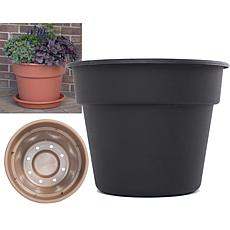 "Bloem Dura Cotta 20"" Planter"