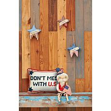C&F Home Don't Mess With U.S. Pillow