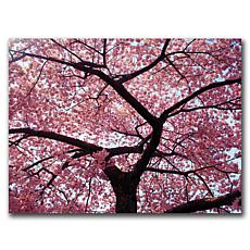 "CATeyes ""Cherry Tree"" Canvas Art - 26"" x 32"""