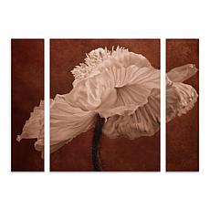 """Cora Niele """"White Poppy"""" Multi-Panel Art Set - 30"""" x 41"""