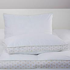 Cottage Collection 2-pack Floral Gusset Pillows - K