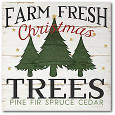 Courtside Market Farm Fresh Christmas Trees 16x16 Canvas Wall Art