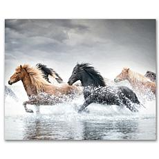Courtside Market Horse Run V 20x24 Canvas Wall Art