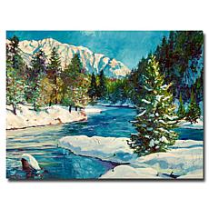 "David Lloyd Glover ""Colorado Pines"" Canvas Art"