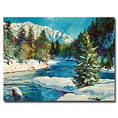 """David Lloyd Glover """"Colorado Pines"""" Canvas Art"""