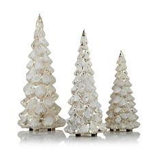 David Monn for Winter Lane 3pk Lighted Glass  Trees