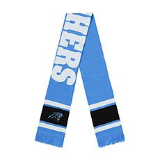 Fan Favorite Carolina Panthers NFL Vantage Jacquard Scarf
