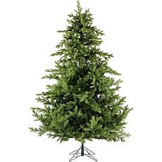Fraser Hill Farm 12' Foxtail Pine Tree