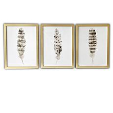 Gallery 57 Feathers Set of 3 Framed Art