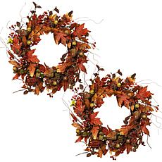 "Gerson Set of 2 24"" Harvest Acorn Wreaths"