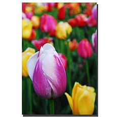 """Giclee Print - In Among the Tulips 24"""" x 32"""""""