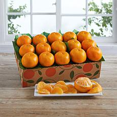 Hale Groves 15-count Holiday Golds Mandarin Oranges