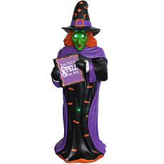 Haunted Hill Farm 4' Halloween Witch w/LED & Fiber Optic Lights