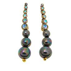 "Heidi Daus ""Elegant Accent"" Crystal Drop Earrings"