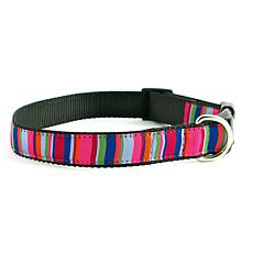 Isabella Cane Dog Collar: ZZ-Stripe-XS