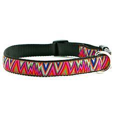 Isabella Cane ZIG-ZAG-M Dog Collar