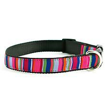 Isabella Cane ZZ-Stripe-L Dog Collar