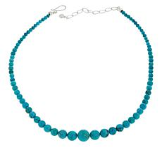 "Jay King 18"" Cloudy Mountain Turquoise Graduated Bead Necklace"