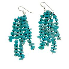 Jay King Amazonite and Black Spinel Bead Drop Earrings