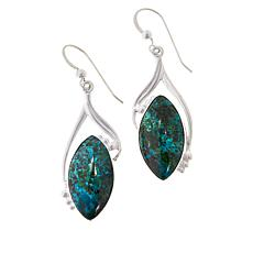 Jay King Arizona Botanical Stone Drop Earrings