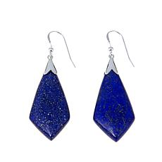 Jay King Freeform Lapis Kite Design Earrings