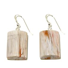 Jay King Petrified Wood Sterling Silver Drop Earrings
