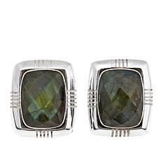 Jay King Rectangular Labradorite Earrings