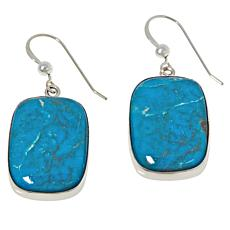 Jay King Sterling Silver Cloudy Mountain Turquoise Drop Earrings
