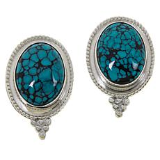 Jay King Sterling Silver Hubei Spider Web Turquoise Oval Earrings