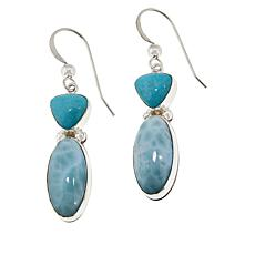 Jay King Sterling Silver Larimar and Turquoise Drop Earrings