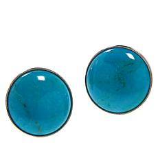 Jay King Sterling Silver Turquoise Hill Turquoise 10mm Stud Earrings