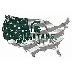 Michigan State University USA Shape Flag Cutout