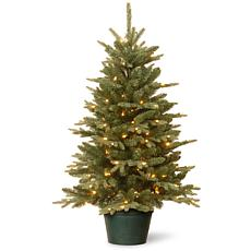 National Tree 3' Everyday Collections Tree in Green Pot w 100 Lights
