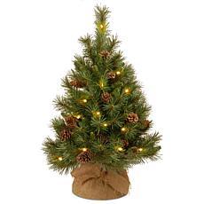 National Tree 3' Pine Cone Burlap Tree w/ 35 White LED Lights w/ Timer