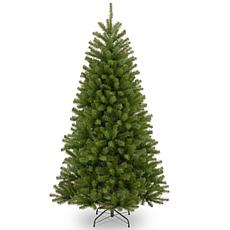 National Tree 6' North Valley® Spruce Tree