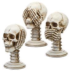 "National Tree Company 7"" Pedestal Skull Assortment - Set of 3"