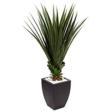 Nearly Natural 4.5' Spiked Agave in Black Planter Indoor/Outdoor