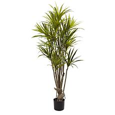 Nearly Natural 5 ft. Dracaena Tree
