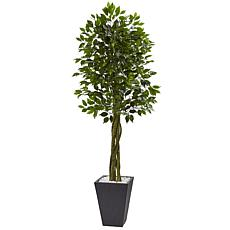 Nearly Natural 6.5 ft. UV Resistant Ficus Tree with Slate Planter