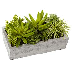 Nearly Natural Silk Succulent Garden with Concrete Planter