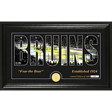 NHL Silhouette Panoramic Bronze Coin Photo Mint - Boston Bruins
