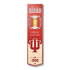 Officially Licensed NCAA Indiana Hoosiers 3D Stadium Banner