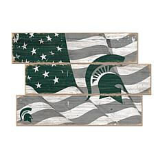 Officially Licensed NCAA Michigan State Three Plank Flag