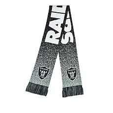 Officially Licensed NFL Big Logo Scarf by Team Beans