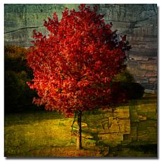 "Philippe Sainte-Laudy Large ""Autumn Red"" Print"