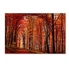 """Philippe Sainte-Laudy Large """"The Red Way"""" Print"""
